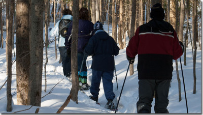 SNowshoeing on the Bruce Trail